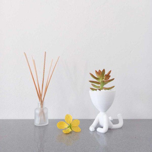 pot planter man ross and ruby royal art 3d printed