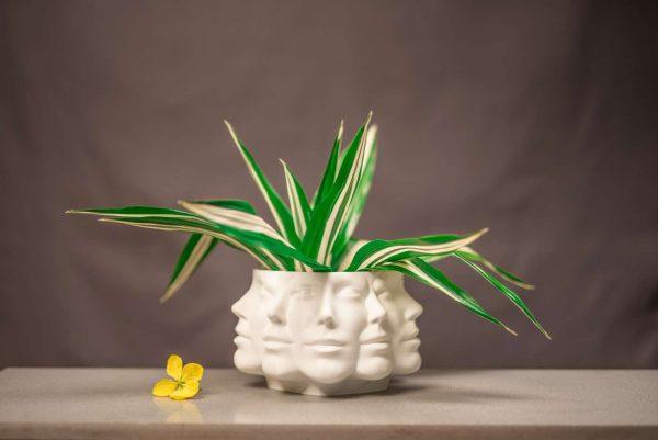 apollo planter many face pot planter royal art and decor