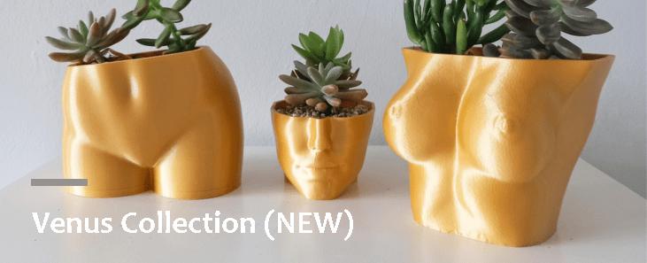 venus collection booty torso face planter royal art and decor
